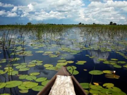 Okavango Poler's Trust
